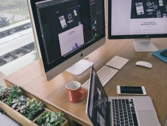 Attraktive Ausbildungsberufe im Bereich der IT-Dienstleistungen