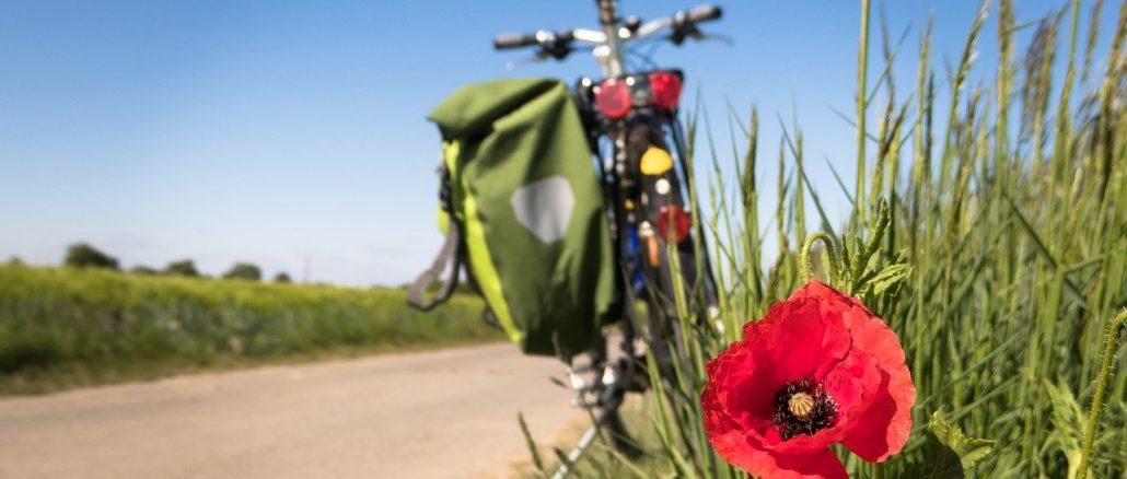 Fahrradtaschen Ratgeber - Packtipps, Montage und Diebstahlsicherung