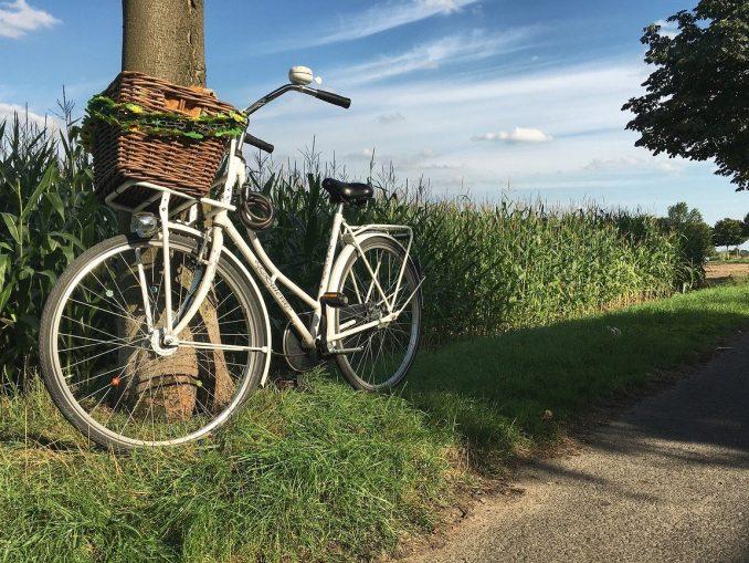 Das Hollandrad: Wenn der Retro-Look einen geografischen Namen trägt